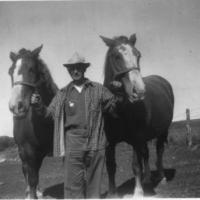 Dan Kerber with work horses he raised himself - 1938